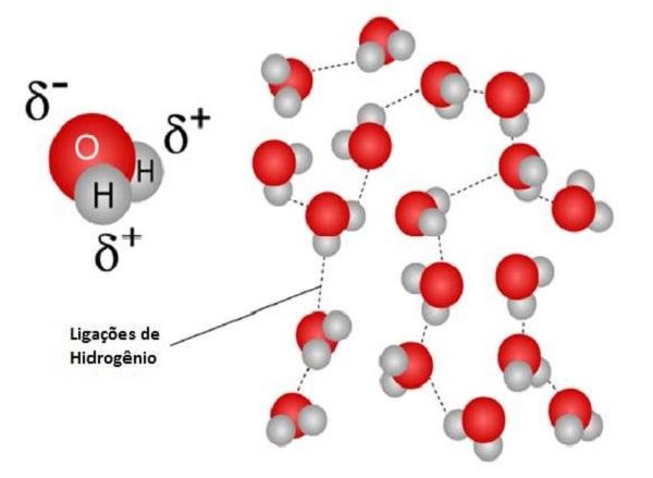 Liên kết hidro là gì?