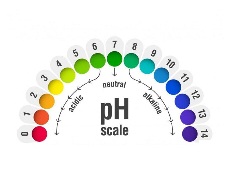 Thang đo nồng độ pH trong nước